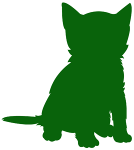 katze,Tierhalterversicherung, Versicherung, op