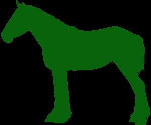 tierversicherung, Pferd, op Versicherung, haftpflicht,Tierhalterversicherung