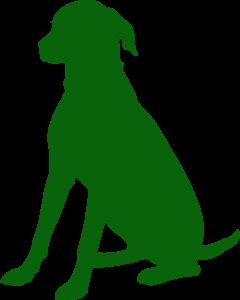 tierversicherung, Hund, op Versicherung, haftpflicht,Tierhalterversicherung